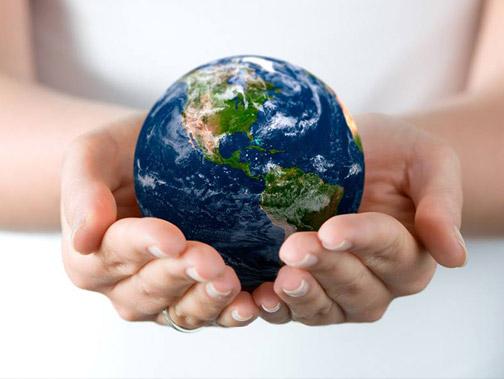 Законы окружающего мира